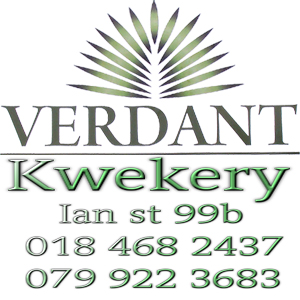 Verdant Kwekery & Coffee Shop